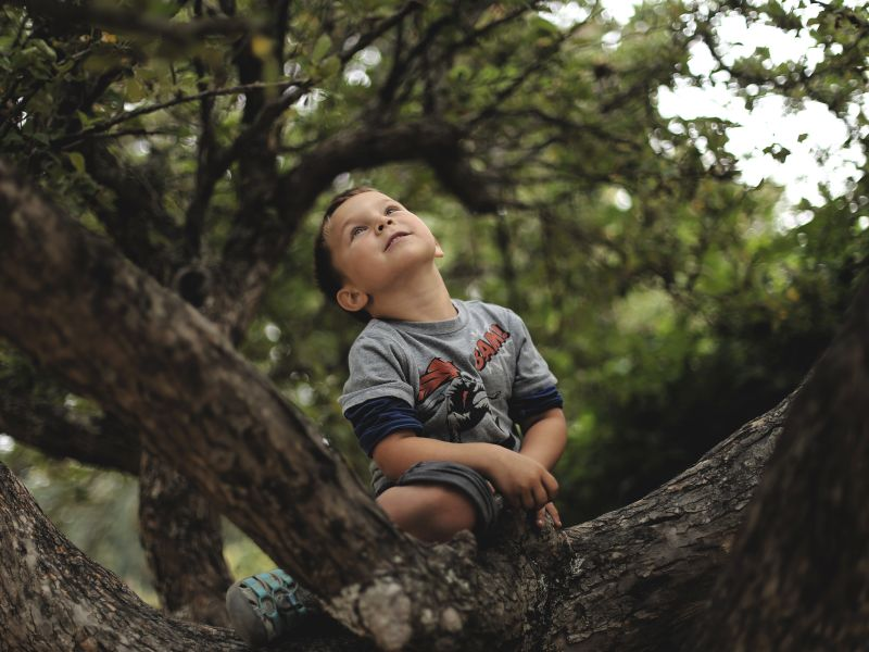 Chlapec sediaci na strome